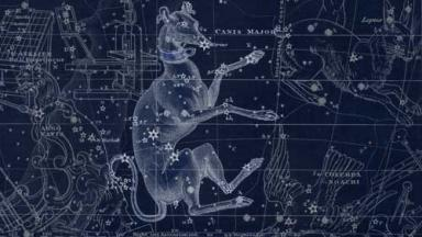 sketch of a greyhound type dog superimposed on an astronomical chart