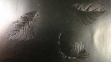 closeup image of raised ink feathers, black on black